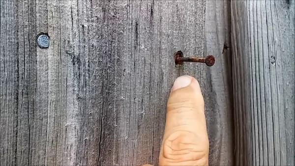 nail and fence