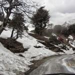 Munsiyari – My Experience in Little Kashmir