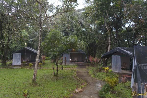 Monica Tent House